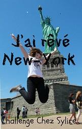 newyork_sylire