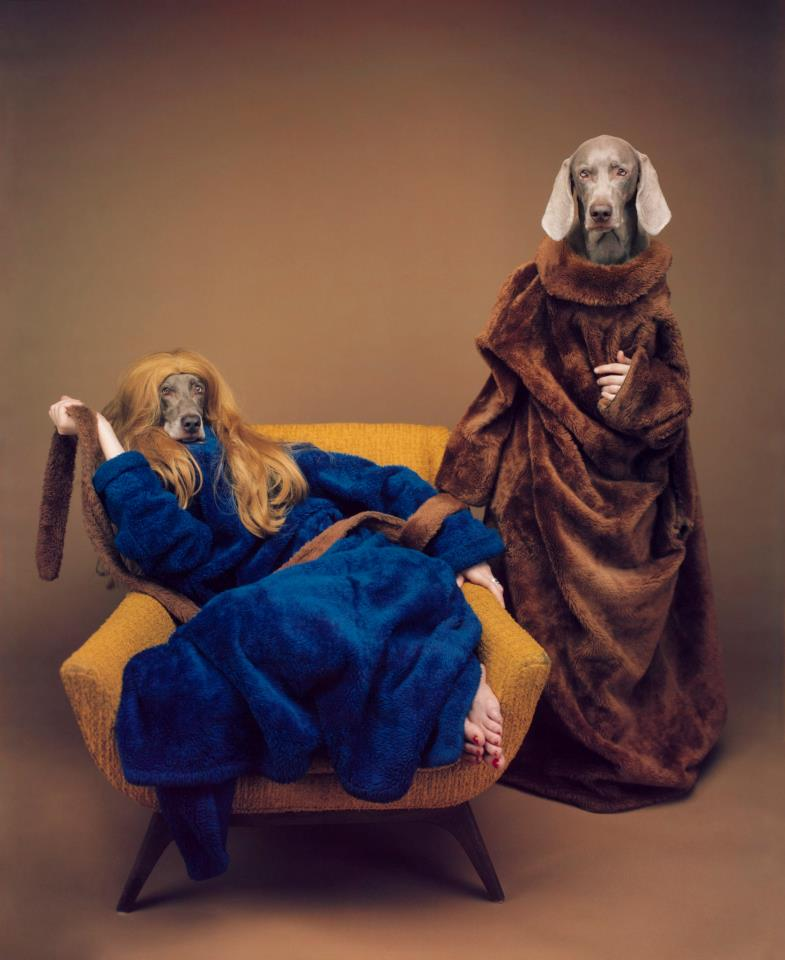 william_wegman2.jpg