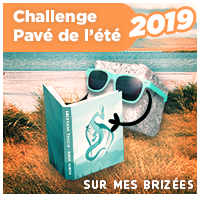 pave-2019-pm-or