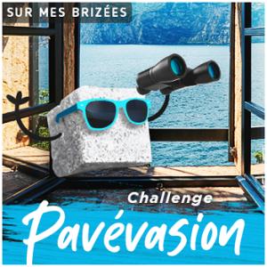 logo-challenge-pavc3a9vasion-moymle